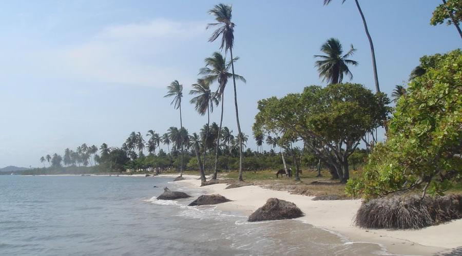 Passeio Praia Ponta do Curral